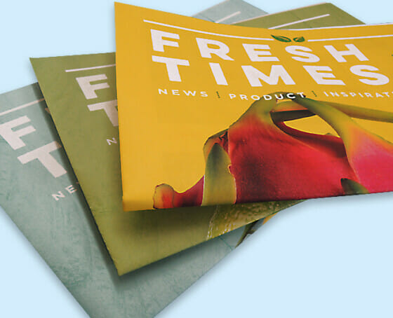 Fresh Times Printed Colour Magazine