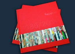 Red Printed Promotional Book